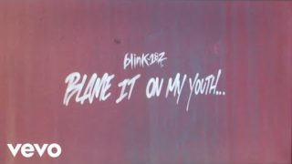 blink-182 – Blame It On My Youth (Lyric Video)