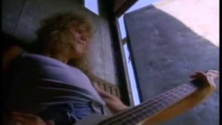 DEF LEPPARD    Animal  Official Music Video